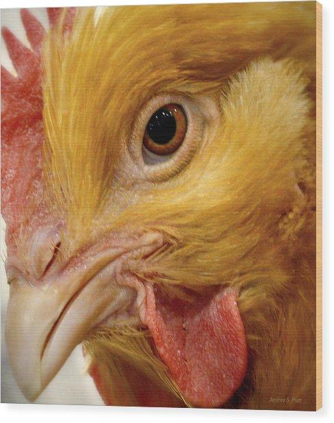 Chicken Vision Wood Print