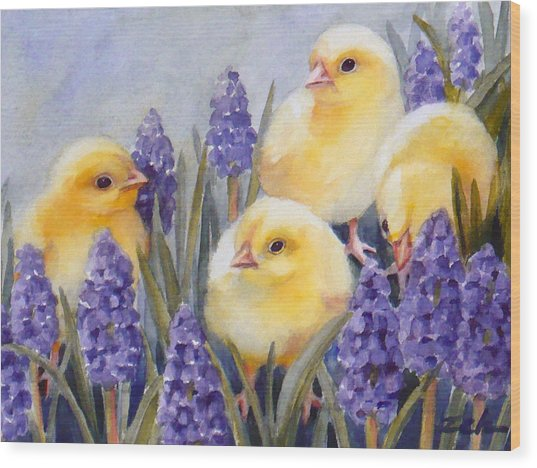 Chicks Among The Hyacinth Wood Print