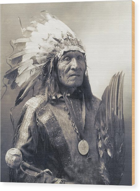 Chief He Dog Of The Sioux Nation  C. 1900 Wood Print