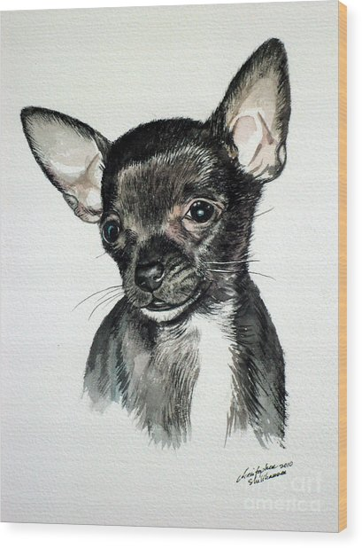 Chihuahua Black 2 Wood Print