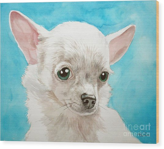 Chihuahua Dog White Wood Print