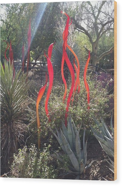 Chihuly Glass Wood Print by Jack Edson Adams