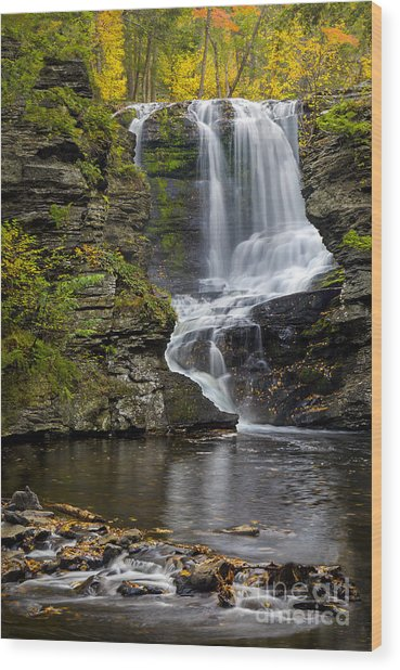 Childs Park Waterfall Wood Print