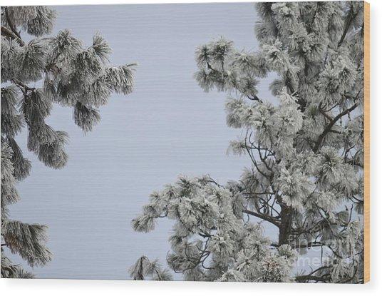 Chill Tree Wood Print
