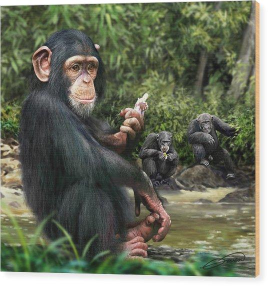 Chimpanzee Wood Print by Owen Bell