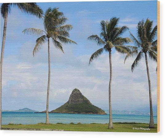 Chinaman's Hat - Oahu Hawai'i Wood Print