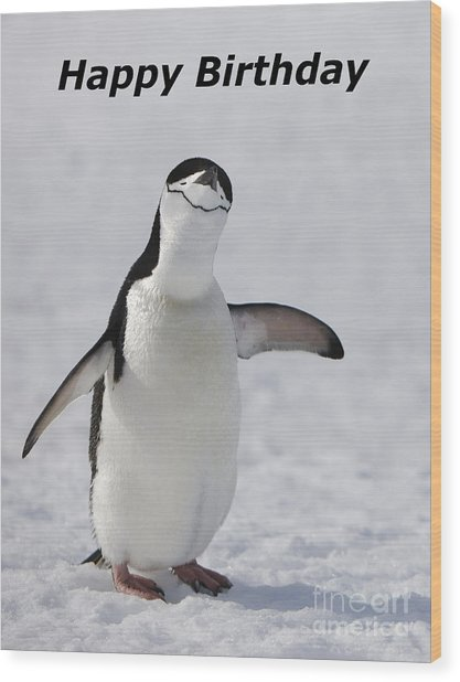 Chinstrap Penguin Wood Print