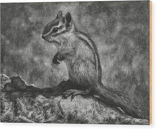 Chipmunk On The Rocks Wood Print