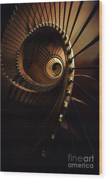 Chocolate Spirals Wood Print