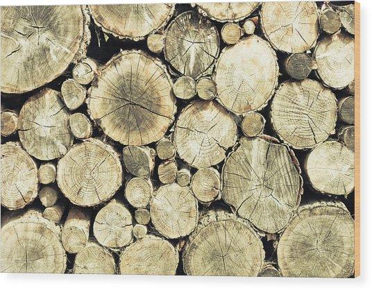 Chopped Wood Wood Print