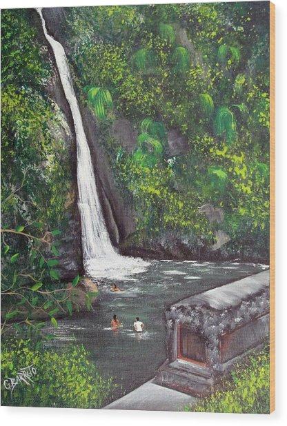 Chorro De Dona Juana Wood Print