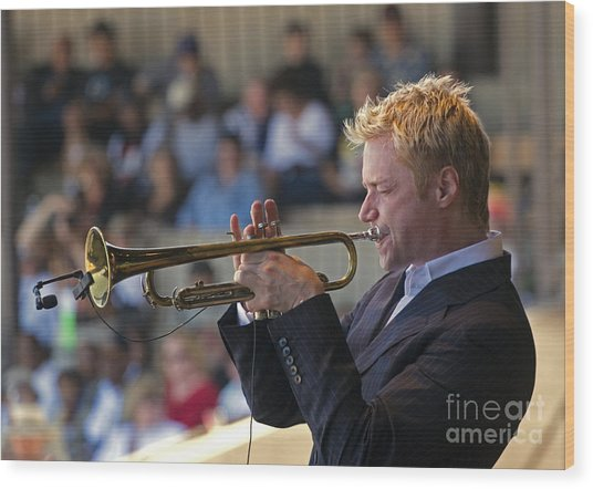 Chris Botti Wood Print