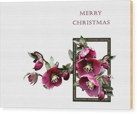 Christmas Hellebores Wood Print