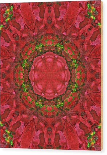 Christmas Kaleidoscope Iv Wood Print