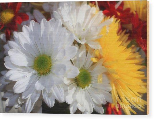 Chrysanthemum Punch Wood Print