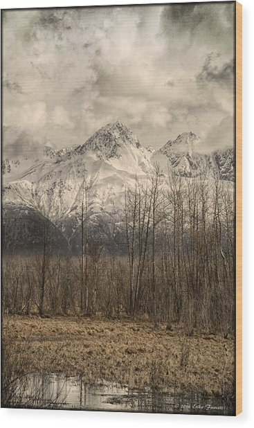 Chugach Mountains In Storm Wood Print