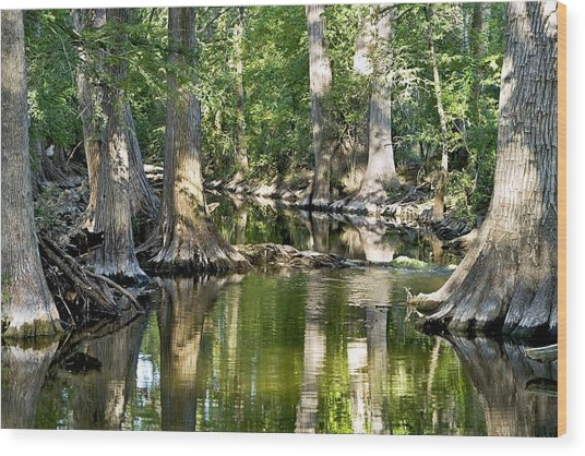 Cibolo Creek - 3 Wood Print