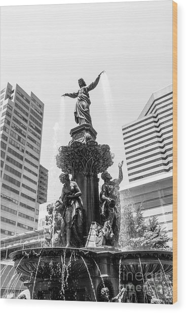 Cincinnati Fountain Black And White Picture Wood Print by Paul Velgos