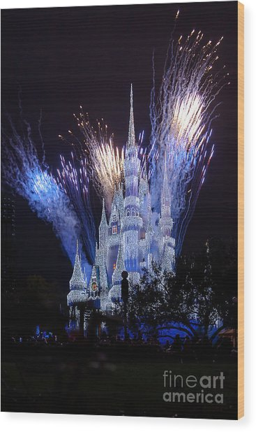 Magic Kingdom Castle Frozen Blue Wood Print