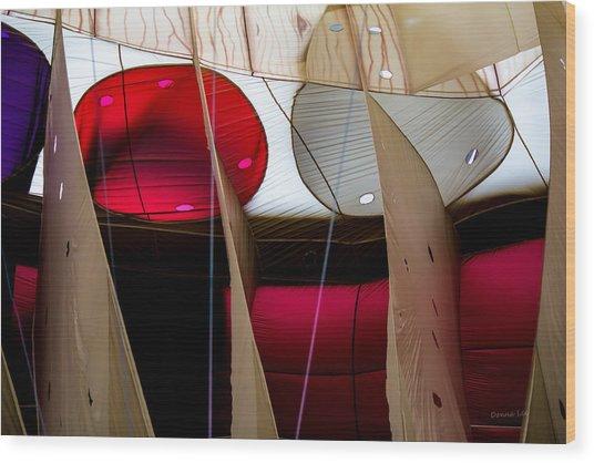 Circles Within Circles - Inside A Hot Air Balloon Wood Print