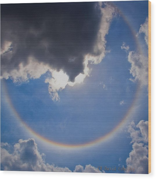 Circular Rainbow-large Wood Print