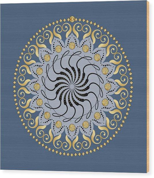 Circularity No. 1032 Wood Print