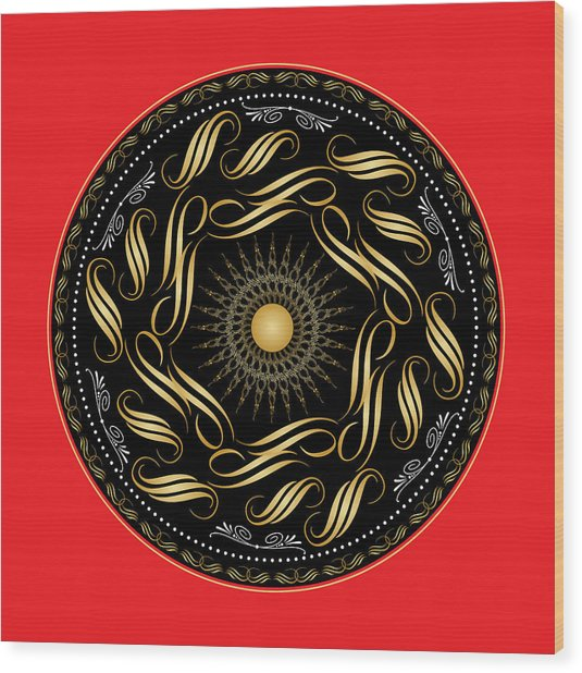 Circularity No. 1119 Wood Print
