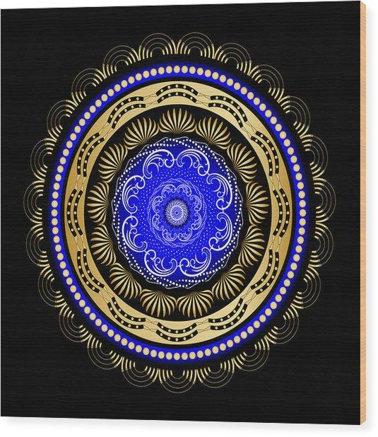 Circularity No. 493 Wood Print