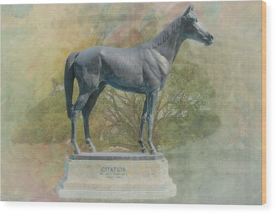 Citation Thoroughbred Wood Print