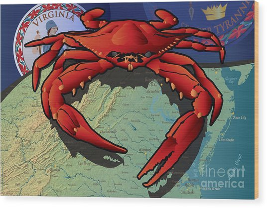 Citizen Crab Of Virginia Wood Print