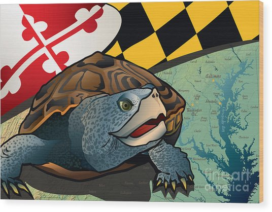 Citizen Terrapin Maryland's Turtle Wood Print