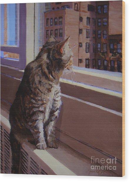 City Kitty Enjoys Her View Wood Print