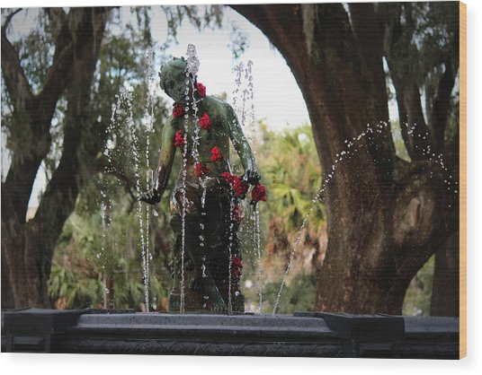 City Park Fountain Wood Print
