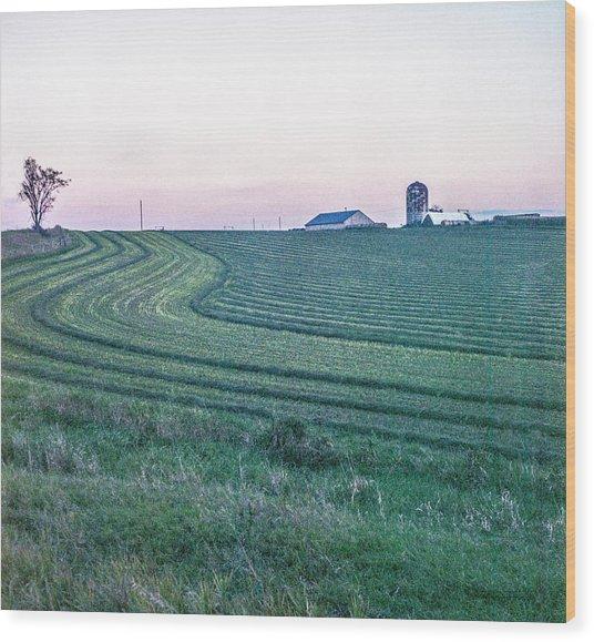 Farm Fields At Dusk Wood Print