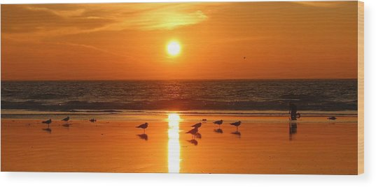 Clam Digging At Sunset - 2 Wood Print