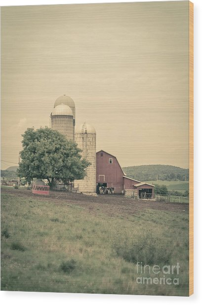 Classic Farm With Red Barn And Silos Wood Print