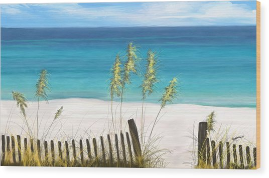 Clear Water Florida Wood Print