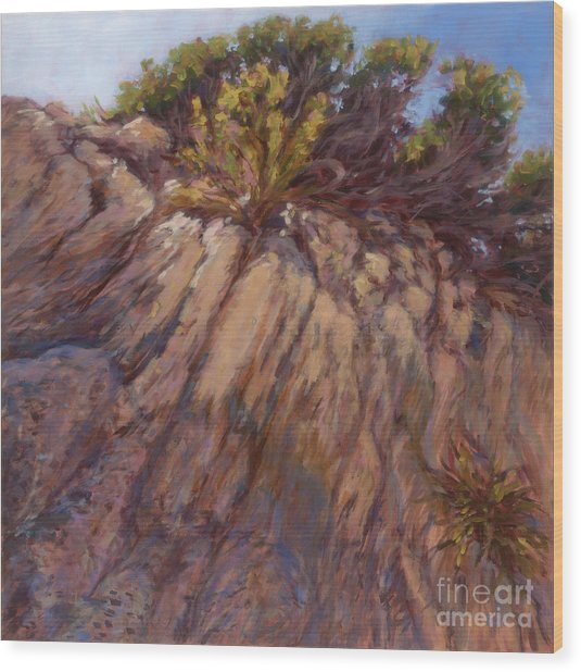 Cliff Hanger Wood Print