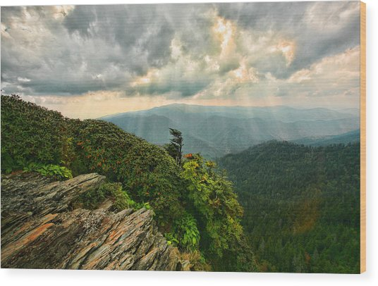 Cliff Tops At Mt. Leconte Gsmnp Wood Print