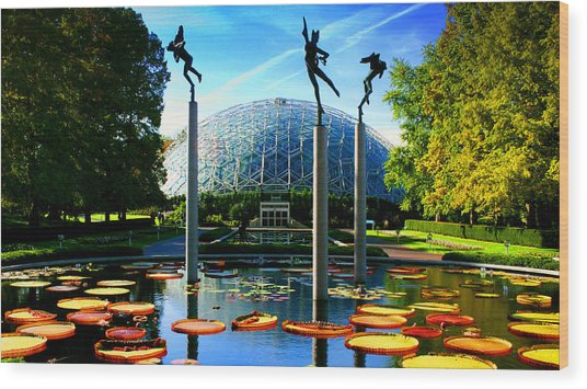 Climatron Geodesic Dome Landscape Wood Print