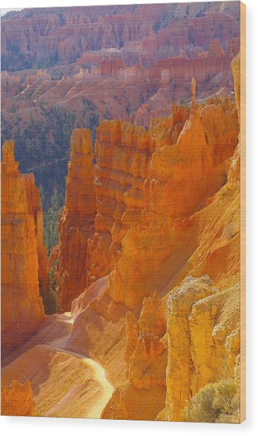 climbing out of the Canyon Wood Print