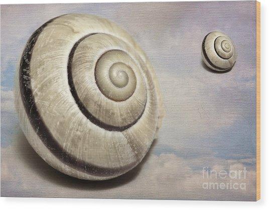Cloud Shells Wood Print