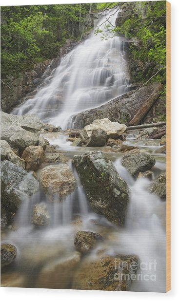 Cloudland Falls - Franconia Notch State Park New Hampshire Usa Wood Print