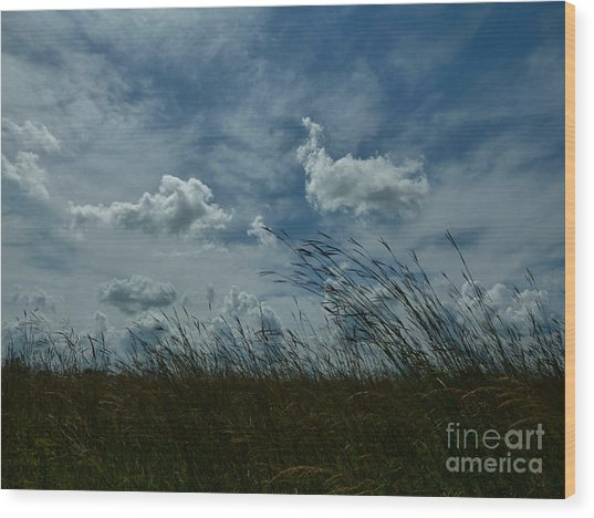 Clouds And Grass Wood Print