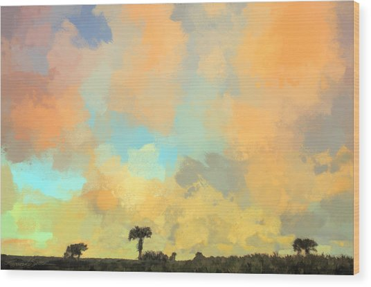 Clouds And Sunset Over Beach Dunes Wood Print