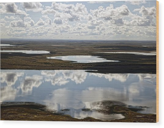 Clouds Reflected In Aleutian Lakes Wood Print by Michael Riley
