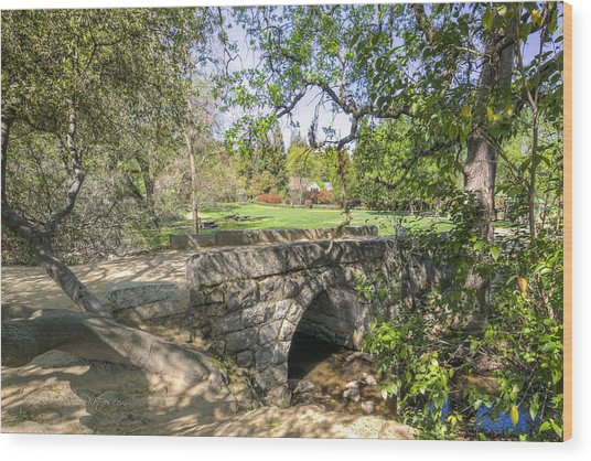 Wood Print featuring the photograph Clover Valley Park Bridge by Jim Thompson