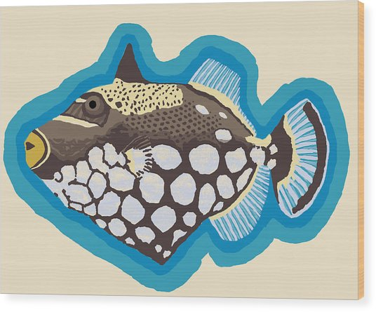 Clown Triggerfish Wood Print