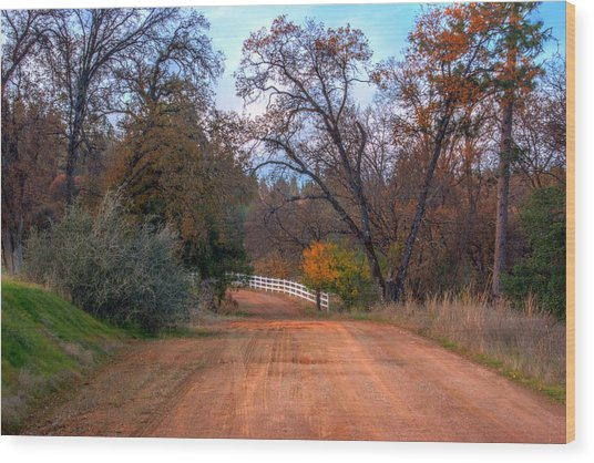 Clydesdale Road Too Wood Print