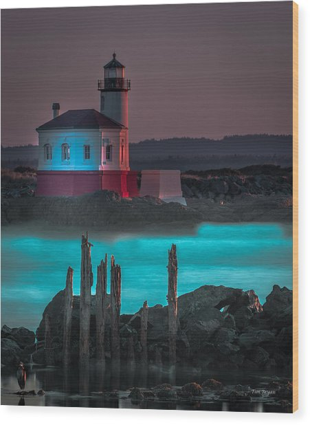 Coaquille Lighthouse Wood Print